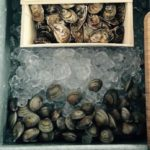 Oysters and Clams chilling on ice - Ready to Shuck!