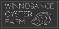 winnegance oyster farm